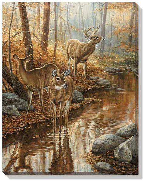 drawing and painting animals 178221321x j ai un casse t 234 te avec cette jolie image tiere h 252 te gravur und wald