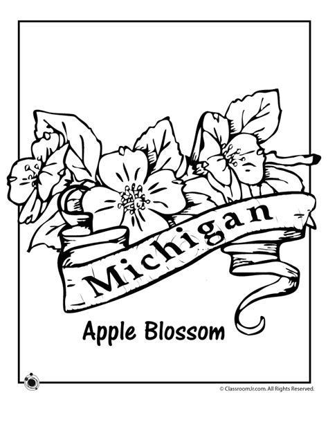 state flower coloring pages michigan state flower coloring