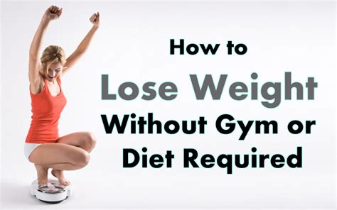 how to lose the wrong without losing you books how to lose weight without or diet