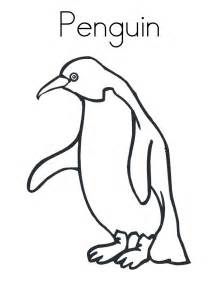 cartoon penguin coloring pages cliparts