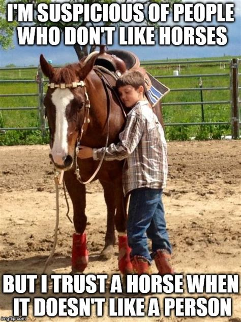 Horse Meme - related keywords suggestions for horse people memes
