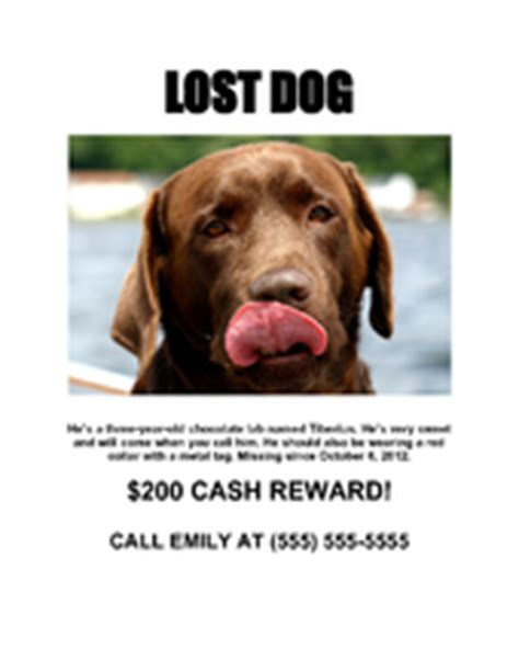 How To Make A Missing Dog Flyer