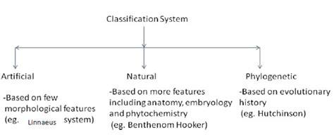 cycle of laminaria flowchart cycle of laminaria flowchart create a flowchart