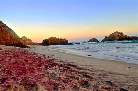 sand beaches el san carle 241 o big sur