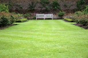 Green Light Auto Sales Advice For Growing And Maintaining The Perfect Lawn