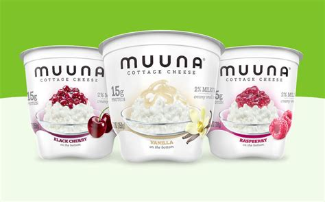 flavored cottage cheese high protein cottage cheese flavors muuna cottage cheese