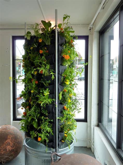 easy diy vertical garden indoor ideas  decorelated