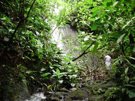 imagenes de naturaleza varias para la venta finca con gran naturaleza con 25 ha de