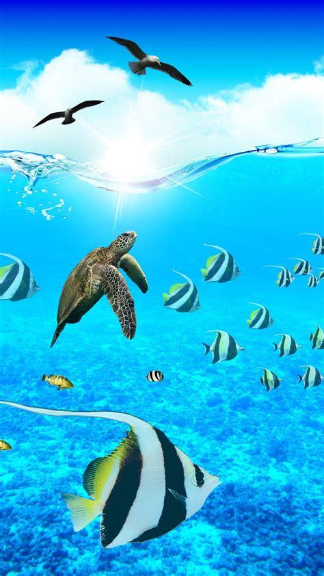 Fish Live Wallpaper Mobile9 by Aquarium Paradise Iphone Wallpapers Mobile9