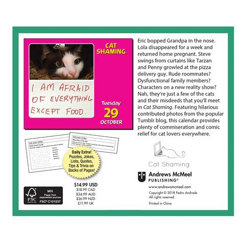 shaming desk calendar cat shaming desk calendar 2019 calendar uk