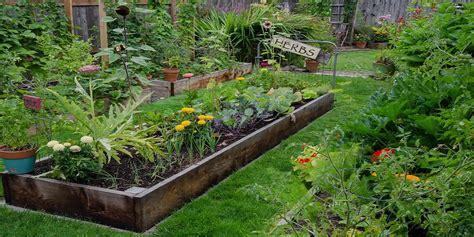 backyard sustainability raised garden beds for better backyard crops the