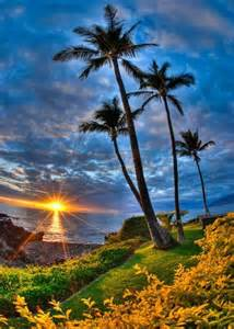 17 best images about beautiful tropical islands on pinterest madagascar philippines and maui