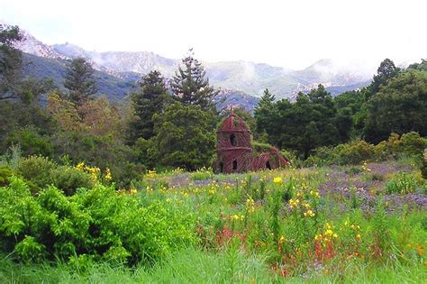 Santa Barbara Botanical Gardens Santa Barbara Botanical Gardens Places I Been Pinterest
