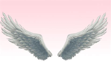 Superior Universal Life Church Of Modesto California #4: Mmd_absolute_best_angel_wings_by_amiamy111-d5ex3w7.png