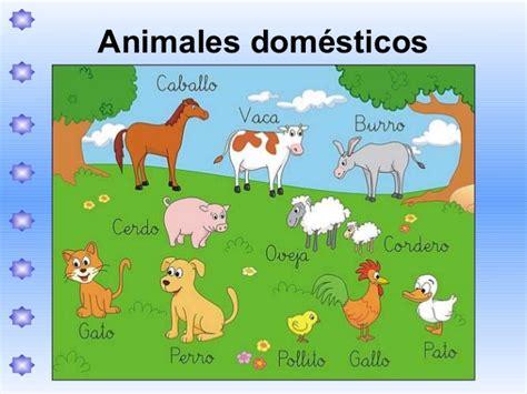 imagenes de animales salvajes y domesticos animales dom 233 sticos y salvajes