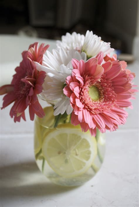 centerpieces diy diy wedding centerpieces gbvideo