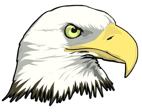 eagle clipart printable bald eagle clip printable