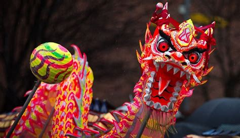 new year 2018 for dragons what s going on this new year 2018 in manchester