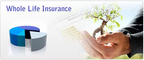 whole policy existence policy get best existence covered now before