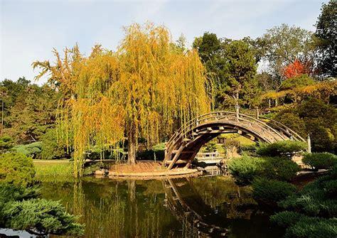 japanischer garten los angeles moon bridge japanese garden at huntington library and