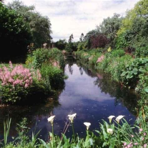 Lins Garden Norfolk by Gooderstone Water Gardens Nature Trails King S Top Tips Before You Go