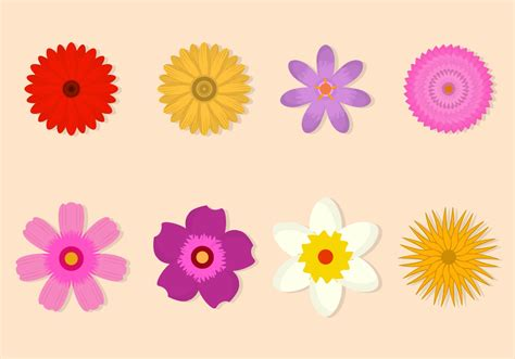 free flower vector collection free vector
