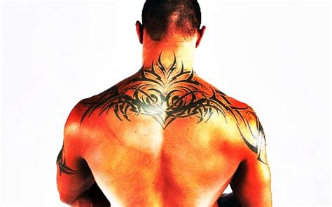 randy orton back tattoo randy orton s back