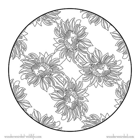 sunflower mandala coloring pages sunflower mandala 4 easy flower mandala coloring page with