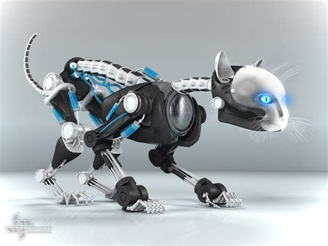 robo cat on behance