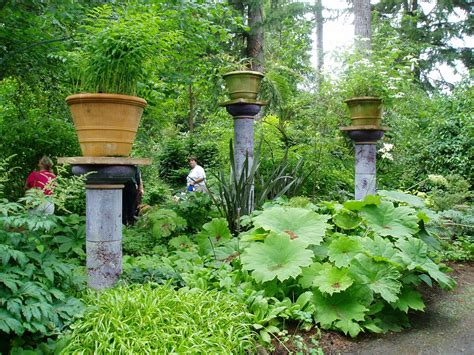 Pacific Northwest Vegetable Gardening A Pacific Northwest Treasure Aims For A Comeback
