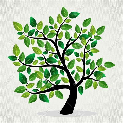designer trees family tree images stock pictures royalty free family