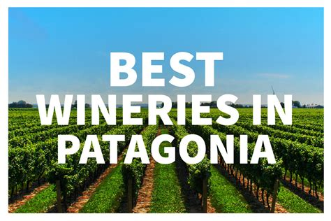 patagonia best best wineries in patagonia argentina jaya travel tours