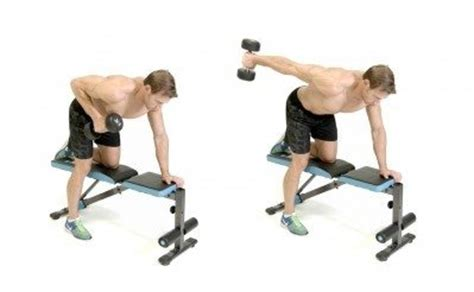 tricep kickbacks on bench how to strengthen triceps quora