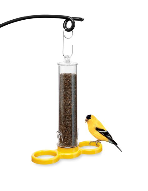 droll yankees bird finch finder nyjer seed