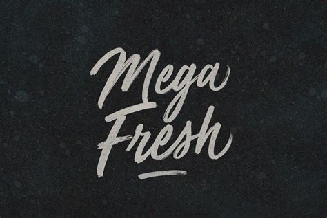 typography 5 photoshop mega fresh script fonts on creative market