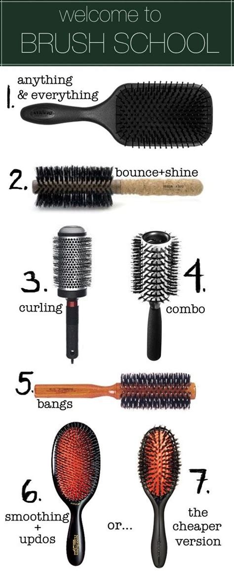 Types Of Brushes For Hair by Hair Brush Types Hair Makeup Style