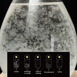 Home Decor Globe tempo storm glass drop weather forecast water drops shape