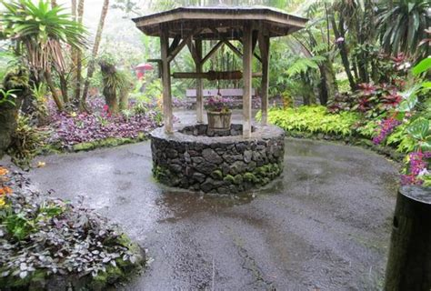 Garden Well by The Ritual Wishing Buying Favors And