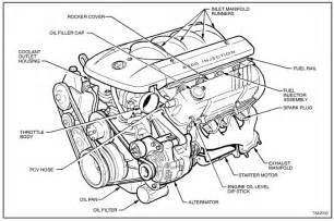car engine diagram labeled the actual wiring get free image about wiring diagram