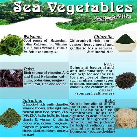 Herbal Cancer Fit anti cancer foods sea vegetables liver cleansing