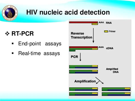 hiv 2 pcr test laboratory diagnosis and monitoring of hiv