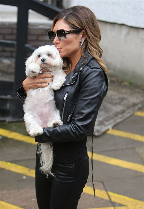 williams dogs robbie williams ayda reveals session daily