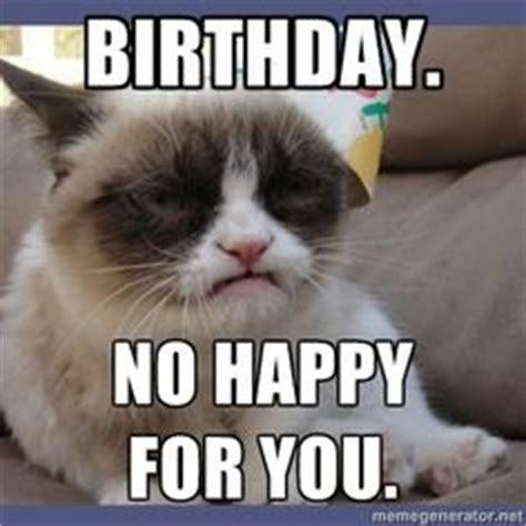 Birthday Grumpy Cat Meme - 1000 images about birthday cards on pinterest birthdays