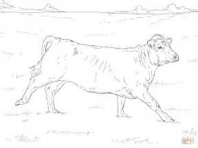hereford cow coloring page running cow coloring page free printable coloring pages
