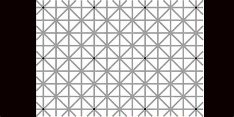 ilusiones opticas explicacion s 243 lo ves 1 punto hay 12 ilusiones 243 pticas y su