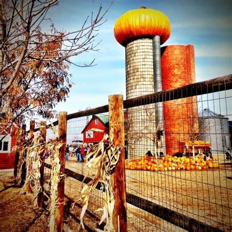 anderson farms erie colorado  epic pumpkin patches