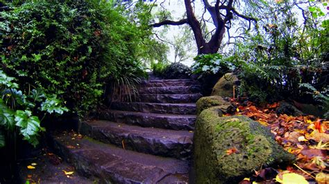 Desktop Rock Garden Hd Wallpaper Rock Stair Garden Autumn Falling Leaves China Desktop Backgrounds Hd 1080p