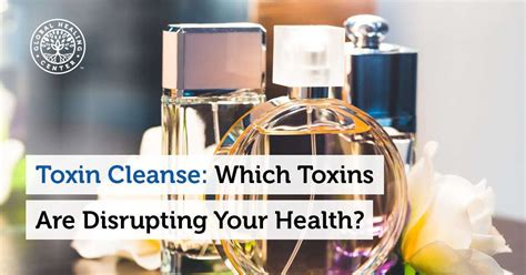 Toxic Detox Challenge by Toxin Cleanse Which Toxins Are Disrupting Your Health