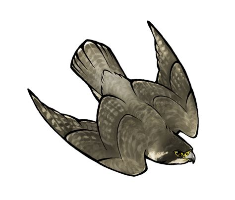 peregrine falcon tattoo designs peregrine stoop by lyosha on deviantart