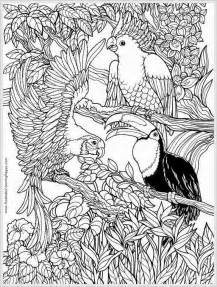 parrots bird free coloring pages realistic